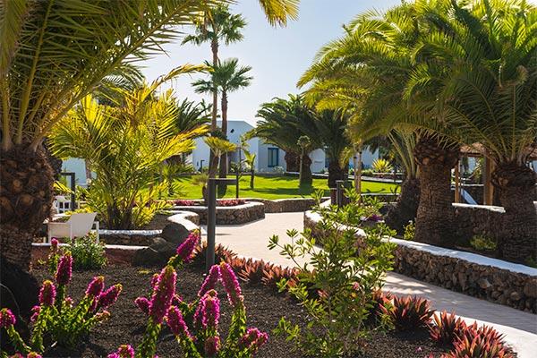 Jardines Exteriores del hotel Elba Premium
