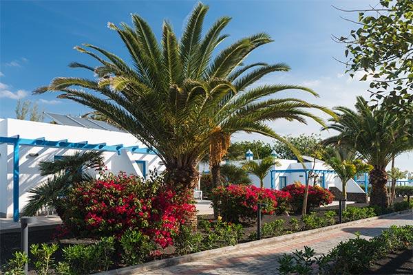 Vista de los jardines en el Elba Premium Suites