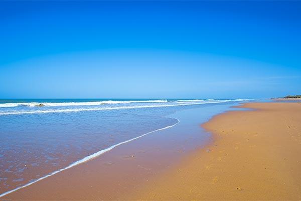 Playa | Hotel Elba Costa Ballena