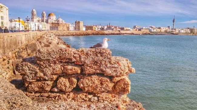We tell you three unique experiences in Cadiz