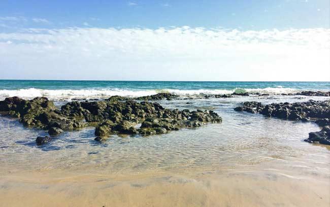 Fuerteventura, una isla que debes conocer