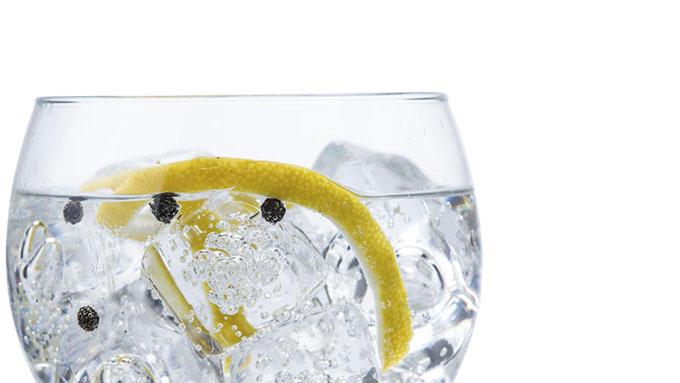 El arte del buen Gin Tonic