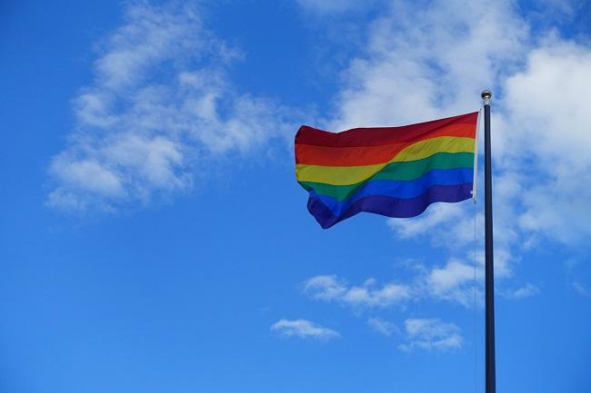 Día Internacional del Orgullo Gay