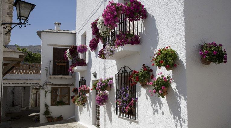 Qué hacer | Hotel Elba Motril