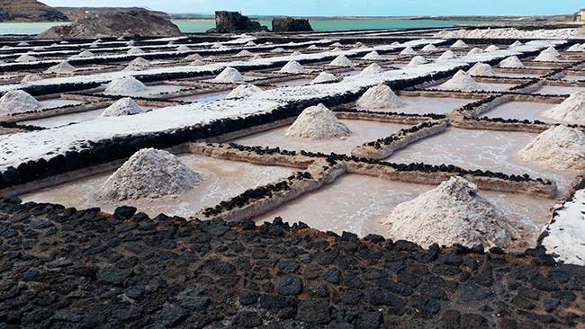 Granja de Sal Espuma en Fuerteventura