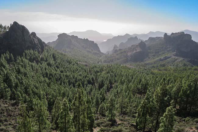 ¿Te gusta el senderismo?  Este mes tienes que ir a Gran Canaria
