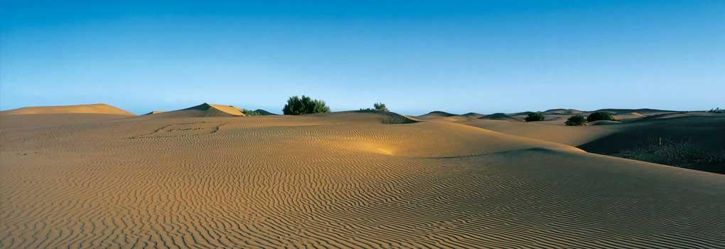 Vista de las dunas de la playa de Maspalomas