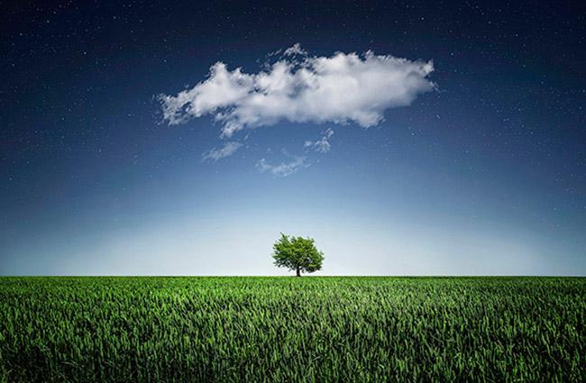 Cuidar del medio ambiente debe ser un gesto cotidiano
